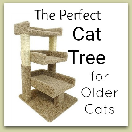 read myCat Tree For Older Cats with Large Perch